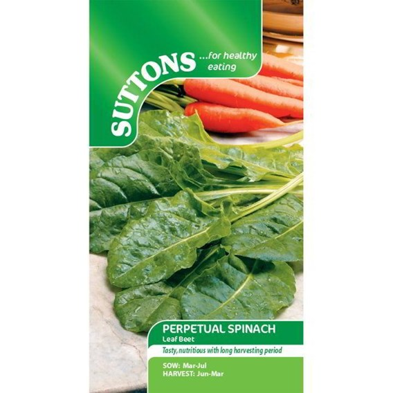 Spinach Seeds - Perpetual Spinach