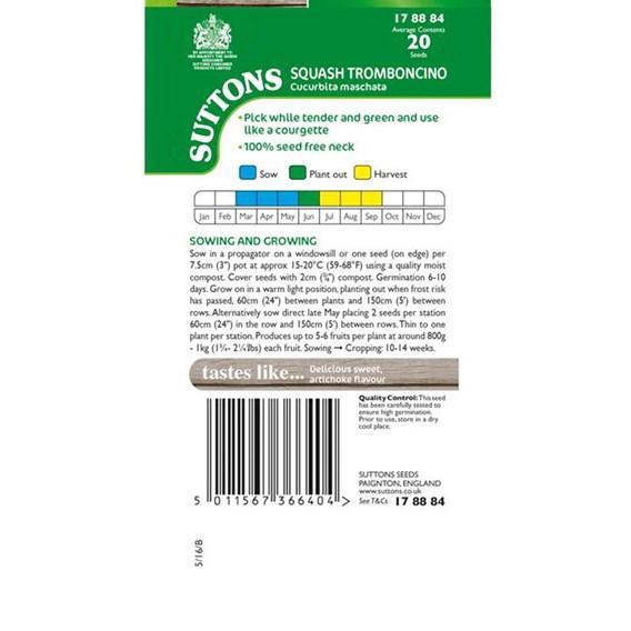 Squash Seeds - Trombocino