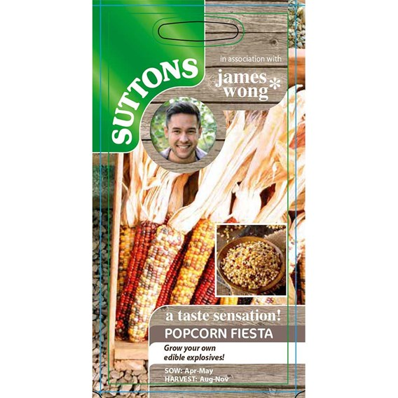 Sweet Corn Popcorn Seeds - Fiesta