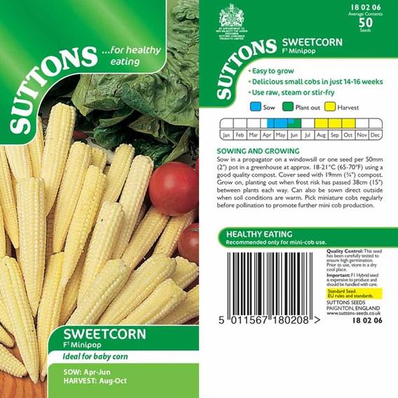 Sweet Corn Seeds - F1 Minipop