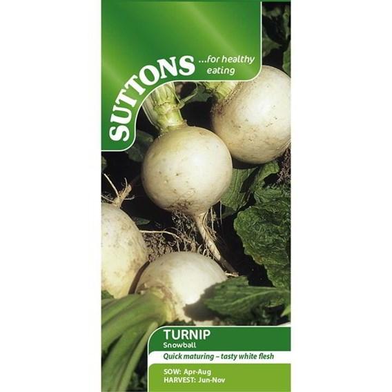 Turnip Seeds - Snowball