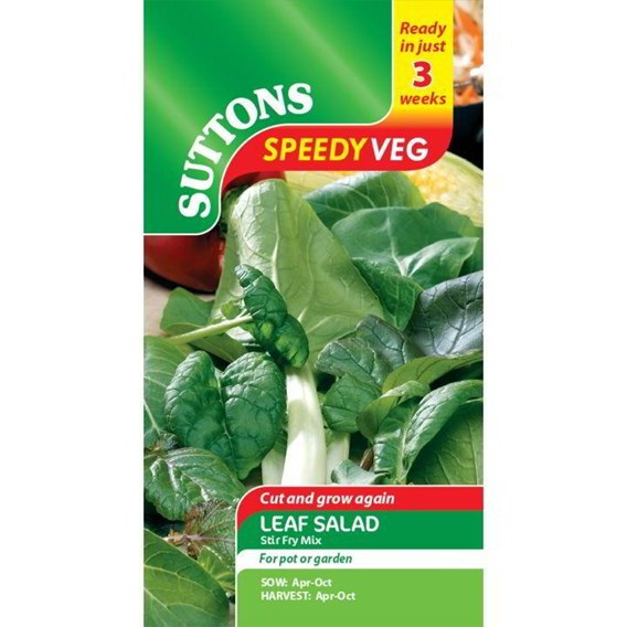 Speedy Veg Seed - Leaf Salad Stir Fry Mix