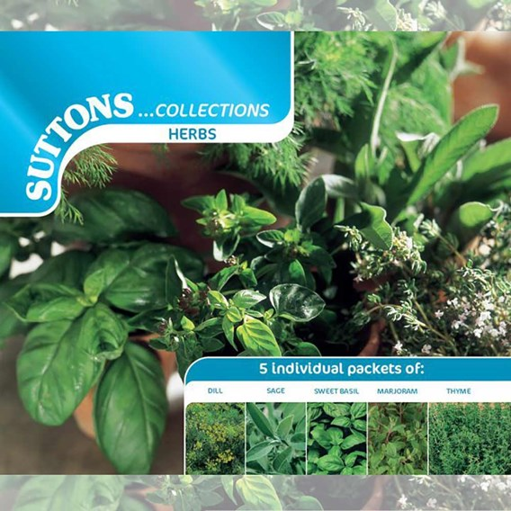 Herb Seed - Collection