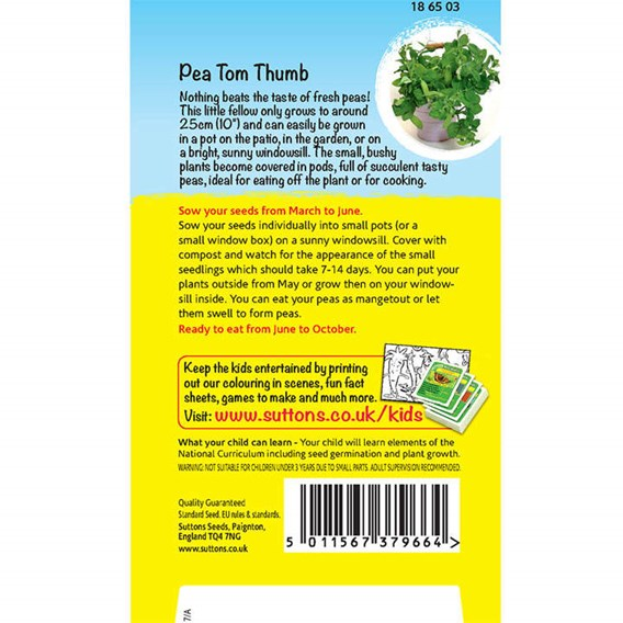Pea Seeds - Mini muncher