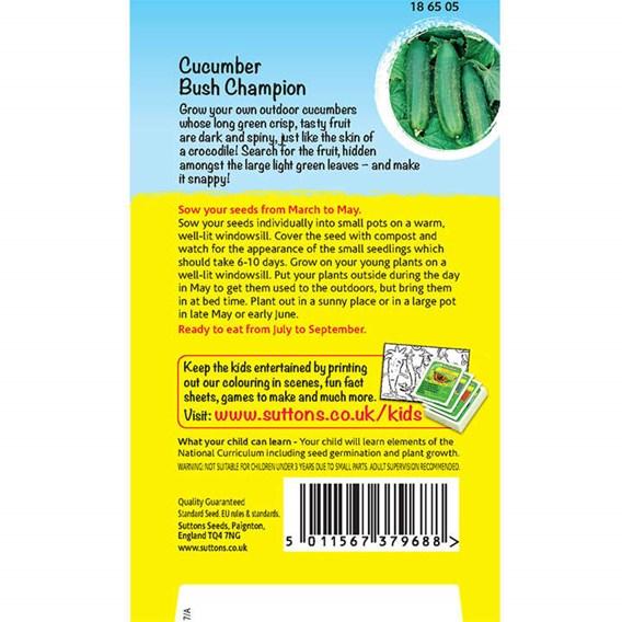 Cucumber Seeds - Crocodile