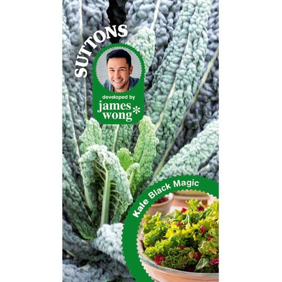Kale Seeds - Black Magic