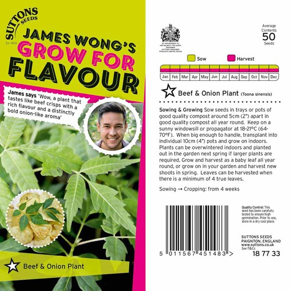 Beef and Onion Plant Seeds