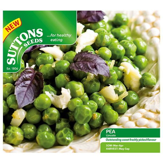 Pea Seeds - Lincoln