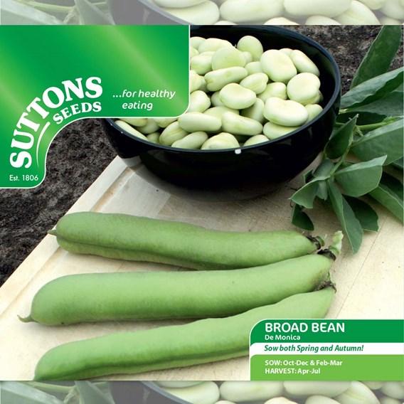 Bean (Broad) Seeds - De Monica