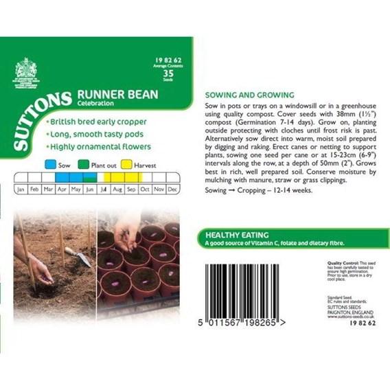 Runner Bean Celebration Seeds