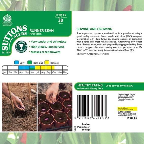 Bean (Runner) Seeds - Firestorm