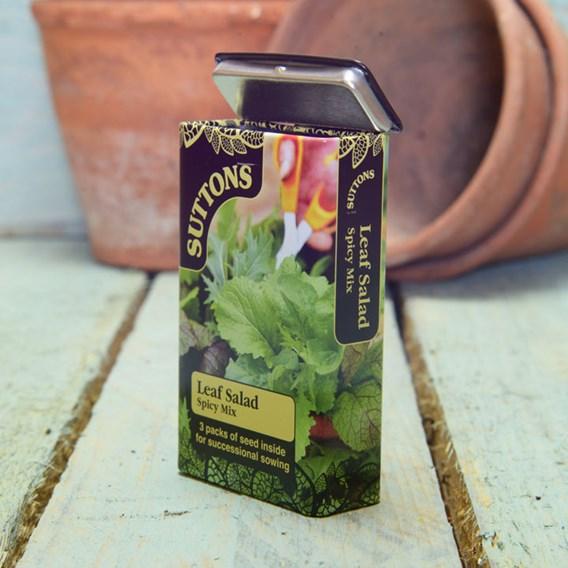Seed Tin Leaf Salad Spicy Mix