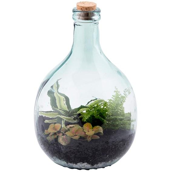 Terrarium Bottle 5L