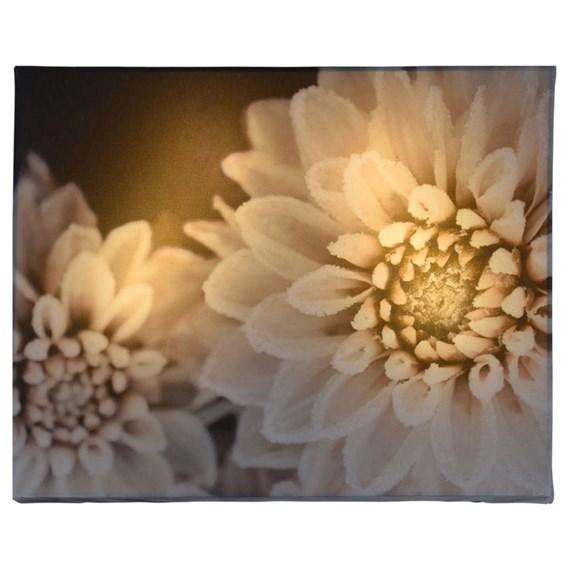 Decorative LED Canvas -Dahlia