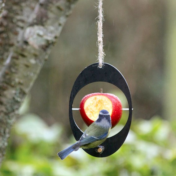 Eco Apple Feeder