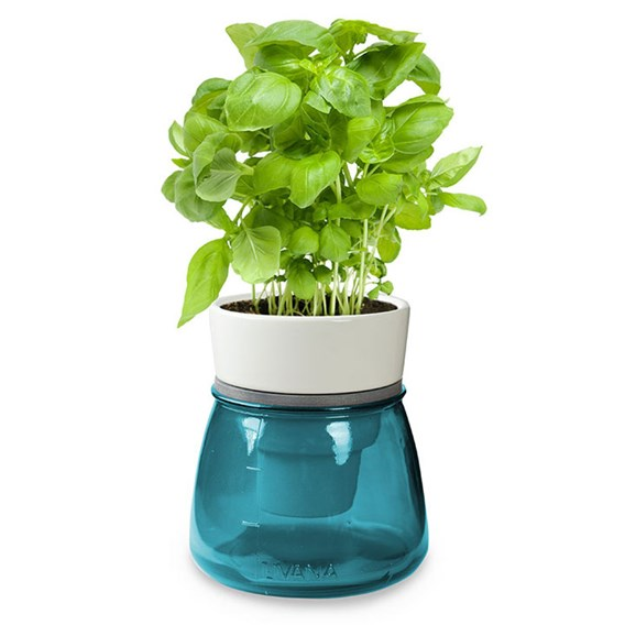 Self Watering Herb Pots