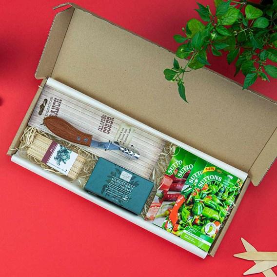 Chilli Letterbox Gift
