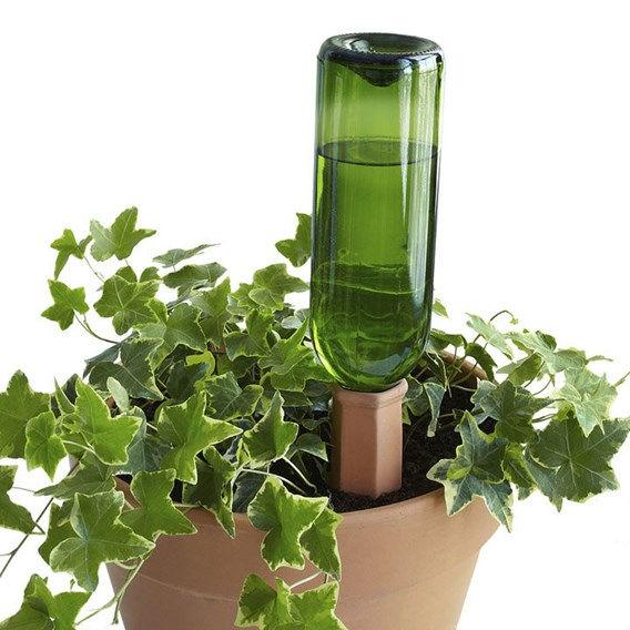 Hydro Wine-Recycle a wine bottle (Set of 4)