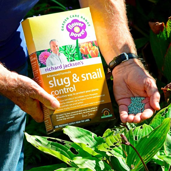 Slug & Snail Pellets