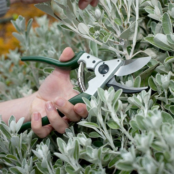 Kew Ergo Heavy Duty Bypass Secateur
