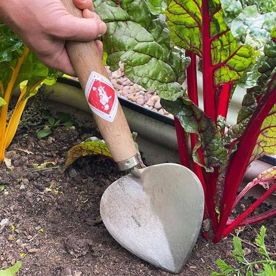 Planting Trowel Old Dutch style, 27cm Ash Handle