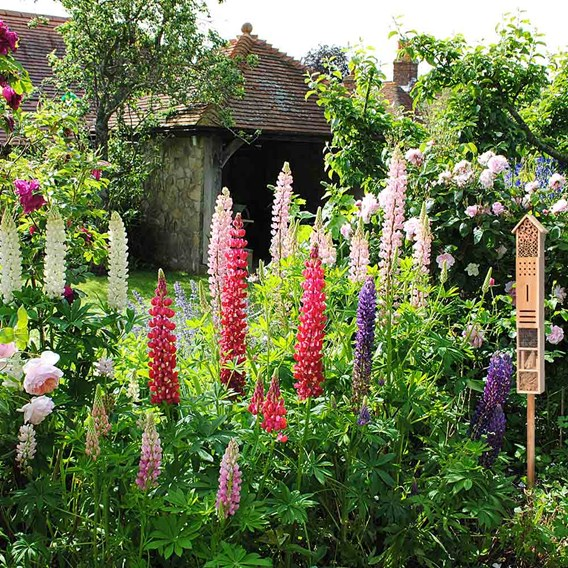 Natural Insect Hotel on a Stake