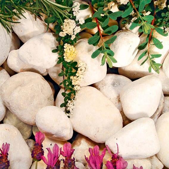 Pearl White Cobbles Bulk