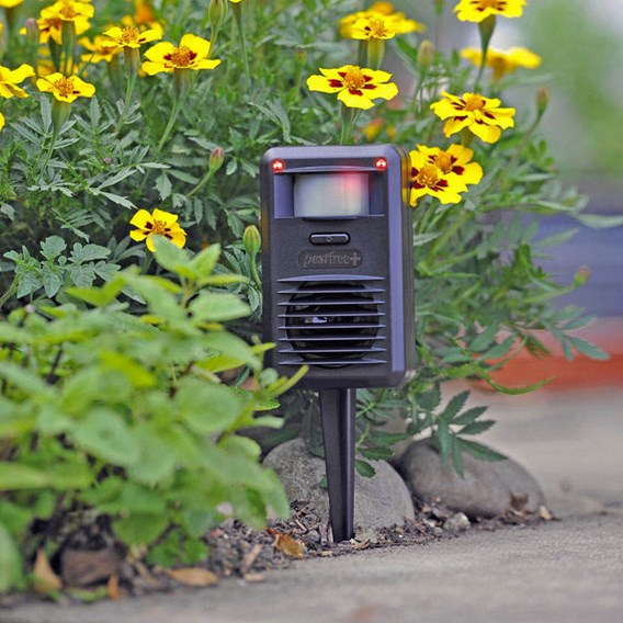 Pestfree Ultrasonic Pest Deterrent