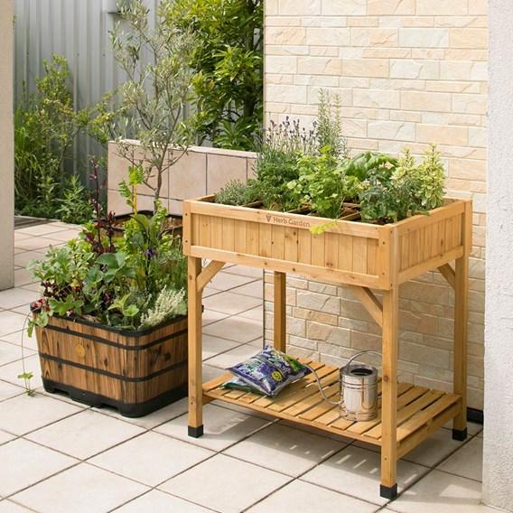 Veg Trug Herb Garden Planter