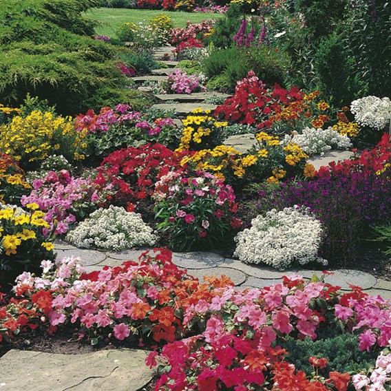 Summer Bedding Our Selection - 18x9cm