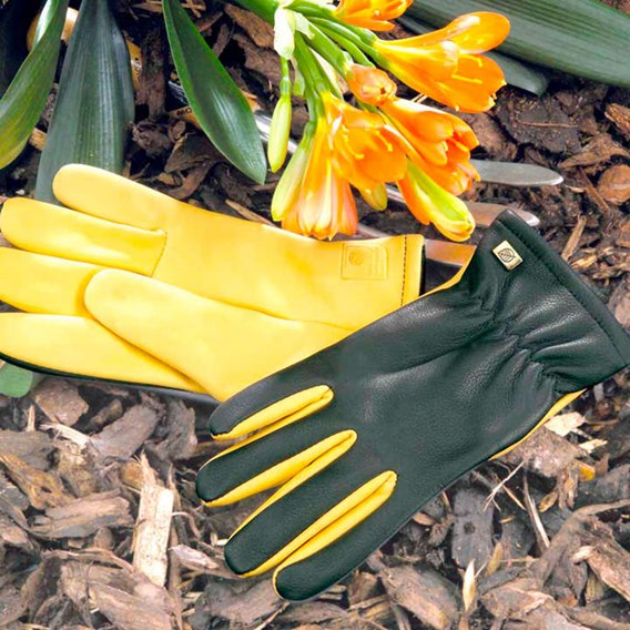 RHS Dry Touch Gloves