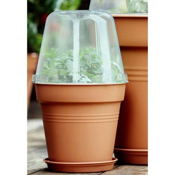 Terracotta Grow Pot + Bell Cover + Saucer