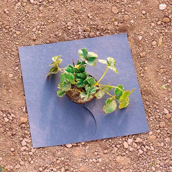 Organic Fyba Mulch Mats