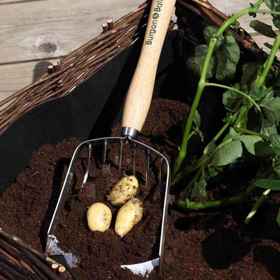 RHS Potato Harvesting Scoop