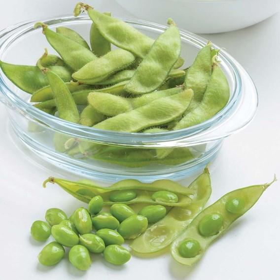 Bean Soya/Edamame Green Shell