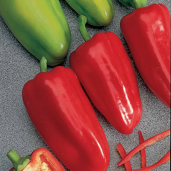 Pepper Sweet Seeds - F1 Gypsy