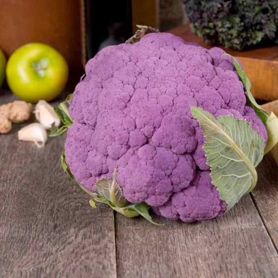 Cauliflower Seeds - Di Sicilia Violetto