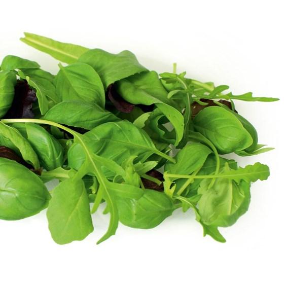Leaf Salad Seeds - Italian Mix