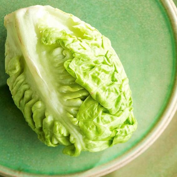 Lettuce Little Gem (20)