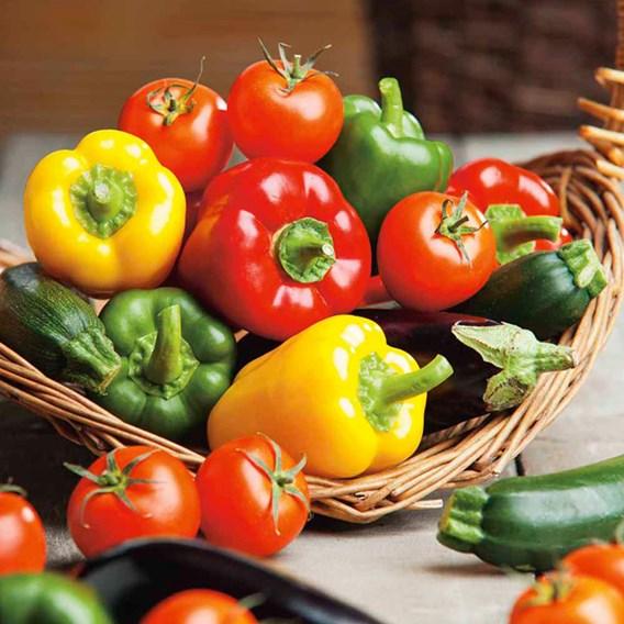 Tomato Mix (6) Our Selection