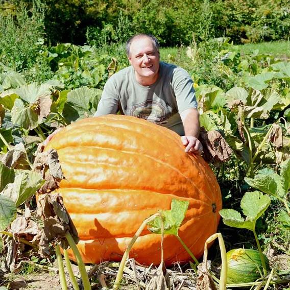 Pumpkin Atlantic Giant (3)