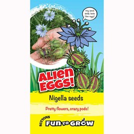 Nigella -Alien eggs