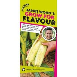 Sweet Corn Seeds - F1 Earlibird