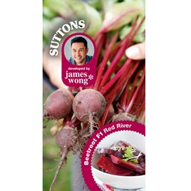 Beetroot Seeds - F1 Red River