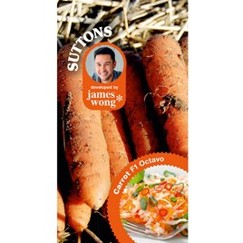 Carrot Seeds - F1 Octavo