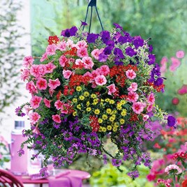 Basket and Container Mix Our Selection (20)