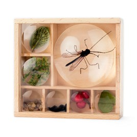 Bug Box & Magnifier Offer Buy Both