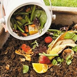 Eco Compost Pail