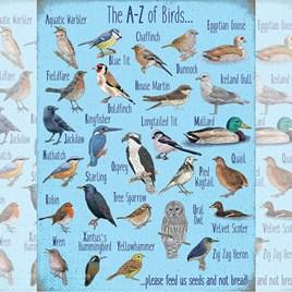A - Z of Garden Birds Metal Sign