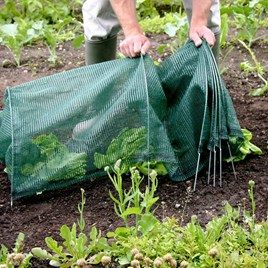 Easy Netting Tunnel